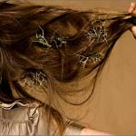 Випадання волосся — як захистити