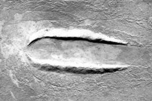 На Марсі виявили місце аварії або посадки НЛО
